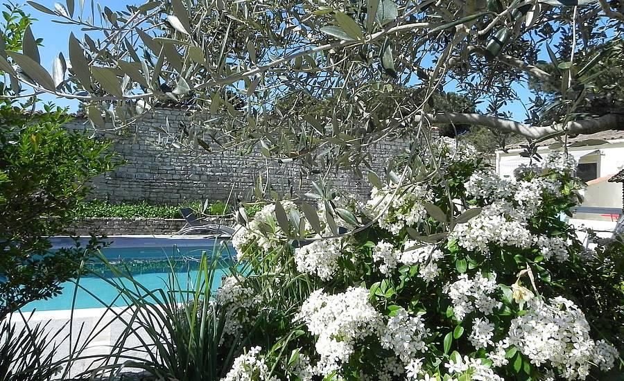 villa-del-re-cote-jardin
